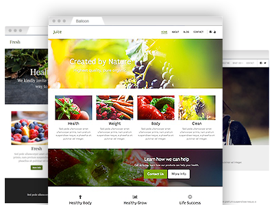 A variety of creative website templates